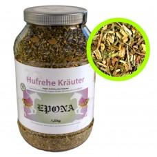 Hufrehe Kräuter (Laminitis Herbs)